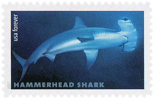 2017 First-Class Forever Stamp - Sharks: Hammerhead Shark