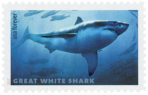 2017 First-Class Forever Stamp - Sharks: Great White Shark