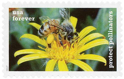2017 First-Class Forever Stamp - Protect Pollinators: Western Honeybee on a Yellow Ragwort