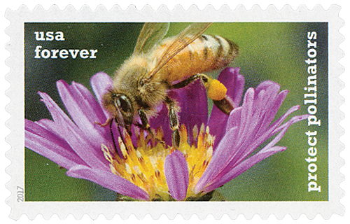 2017 First-Class Forever Stamp - Protect Pollinators: Honeybee on a Purple Aster