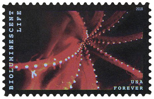 2018 First-Class Forever Stamp - Bioluminescent Life: Octopus