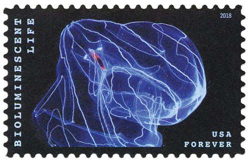 2018 First-Class Forever Stamp - Bioluminescent Life: Comb Jelly