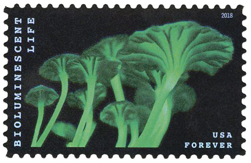 2018 First-Class Forever Stamp - Bioluminescent Life: Mushrooms