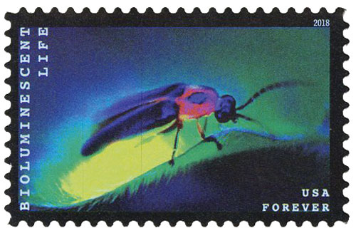 2018 First-Class Forever Stamp - Bioluminescent Life: Firefly