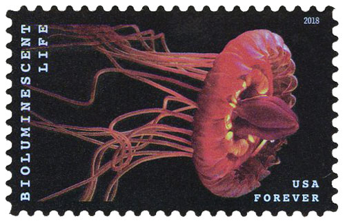 2018 First-Class Forever Stamp - Bioluminescent Life: Crown Jelly