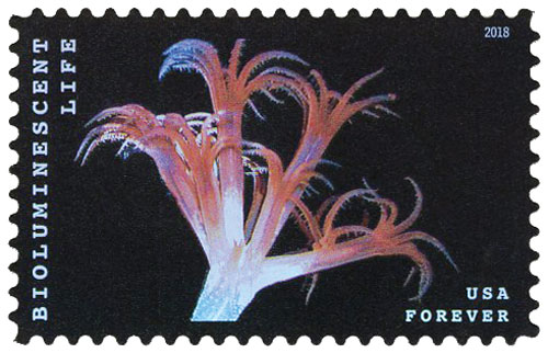 2018 First-Class Forever Stamp - Bioluminescent Life: Sea Pen