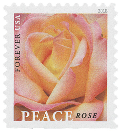 2018 First-Class Forever Stamp - Peace Rose
