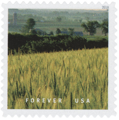 2018 First-Class Forever Stamp - Field of Wheat in Wisconsin