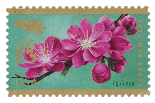 2019 First-Class Forever Stamp - Chinese Lunar New Year: Year of the Boar