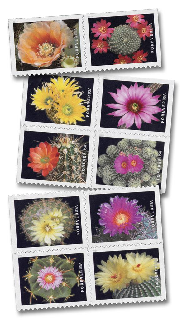 2019 First-Class Forever Stamp - Cactus Flowers