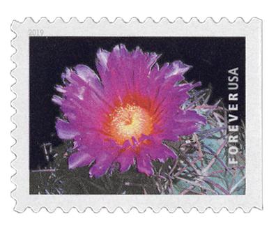 2019 First-Class Forever Stamp - Cactus Flower: Echinocactus horizonthalonius