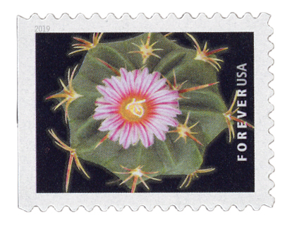 2019 First-Class Forever Stamp - Cactus Flower: Thelocactus heterochromus