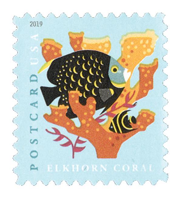 2019 35c Coral Reefs: Elkhorn Coral