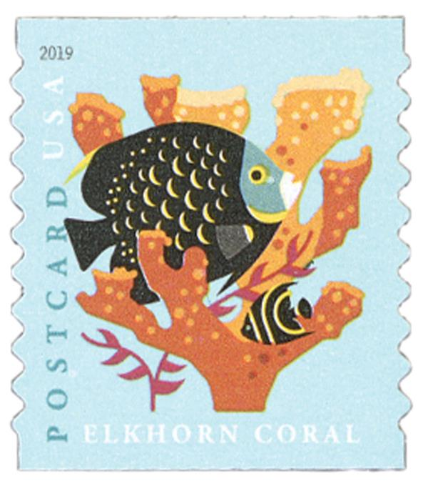 2019 35c Coral Reefs: Elkhorn Coral (coil)