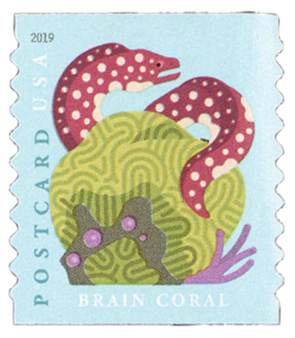 2019 35c Coral Reefs: Brain Coral (coil)