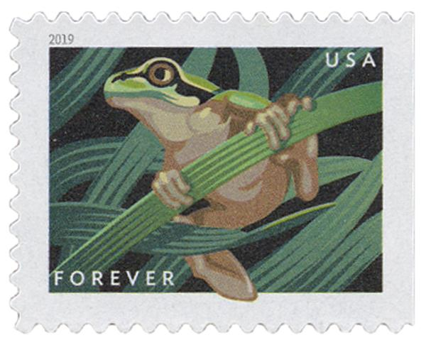 2019 First-Class Forever Stamp - Frogs: Pacific Tree Frog