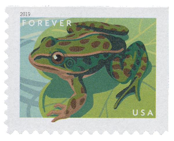 2019 First-Class Forever Stamp - Frogs: Northern Leopard Frog