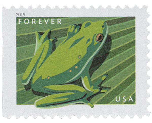 2019 First-Class Forever Stamp - Frogs: American Green Tree Frog