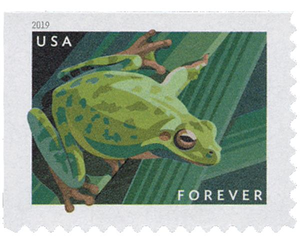2019 First-Class Forever Stamp - Frogs: Squirrel Tree Frog