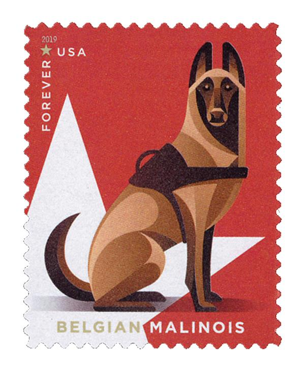 2019 First-Class Forever Stamp - Military Working Dogs: Belgian Malinois