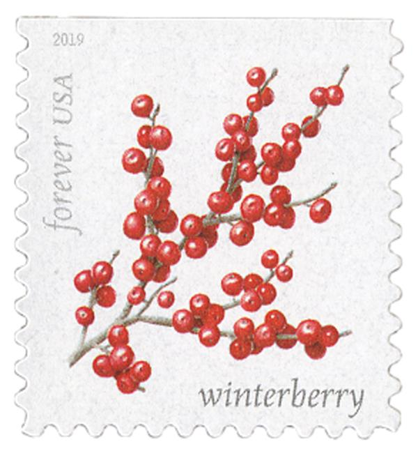 2019 First-Class Forever Stamp - Winter Berries: Winterberry