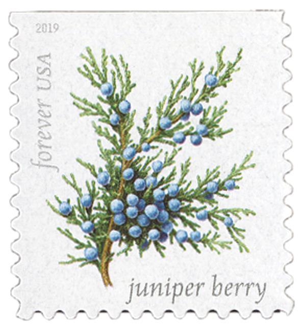 2019 First-Class Forever Stamp - Winter Berries: Juniper Berry