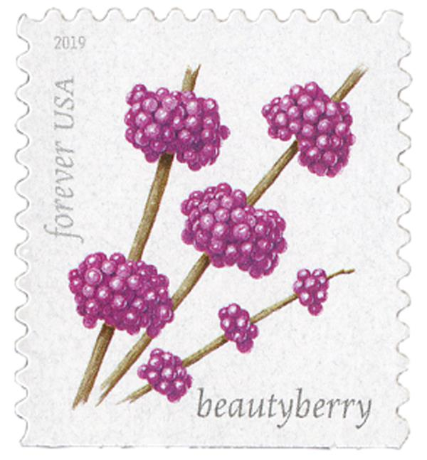 2019 First-Class Forever Stamp - Winter Berries: Beauty Berry