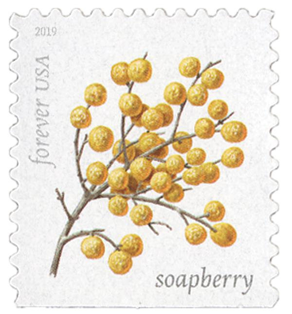 2019 First-Class Forever Stamp - Winter Berries: Soapberry