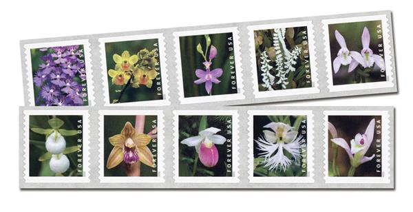 2020 First Class Forever Stamp - Wild Orchids (coil)