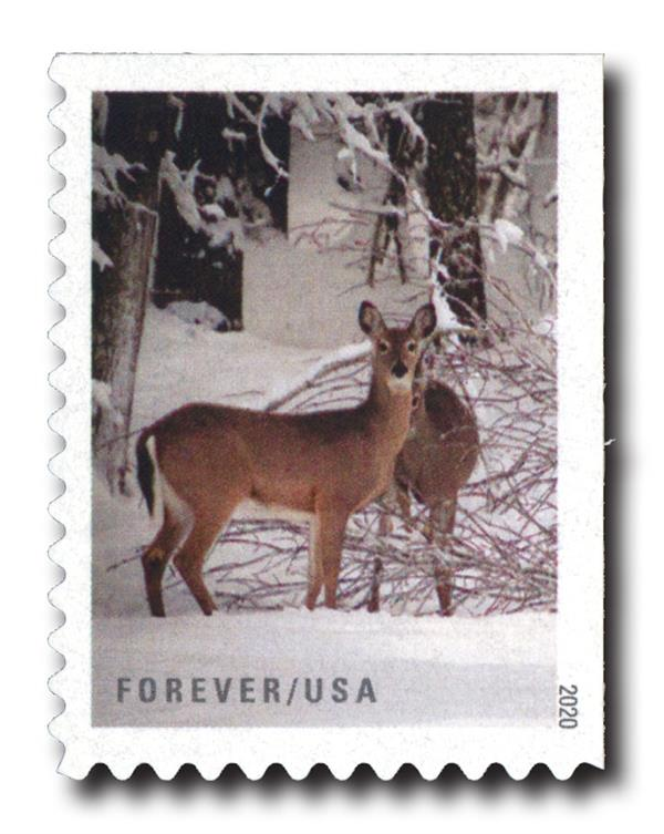 2020 First-Class Forever Stamps - Winter Scenes: Two Deer