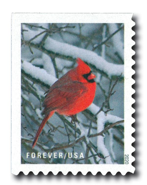 2020 First-Class Forever Stamps - Winter Scenes: Cardinal