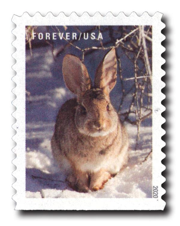 2020 First-Class Forever Stamps - Winter Scenes: Rabbit