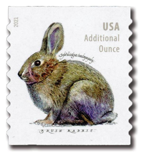 2021 20c Brush Rabbit (coil)