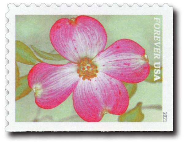 2021 First-Class Forever Stamps - Garden Beauty: Pink Flowering Dogwood