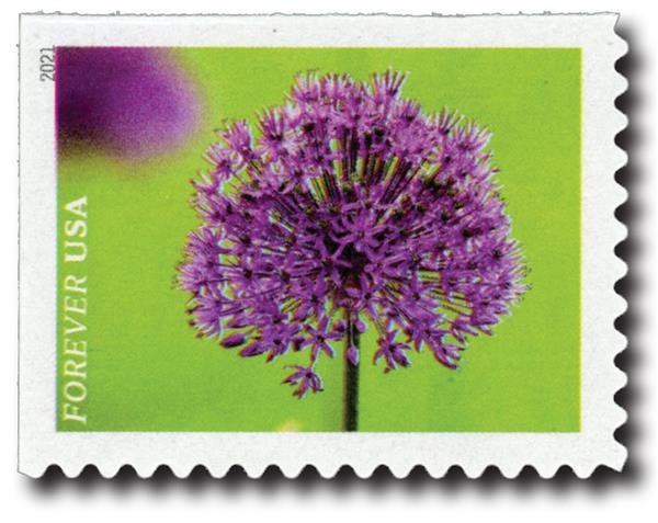 2021 First-Class Forever Stamps - Garden Beauty: Allium