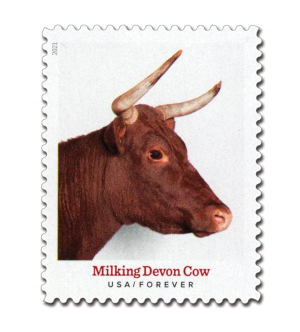 2021 First-Class Forever Stamp - Heritage Breeds: Milking Devon Cow