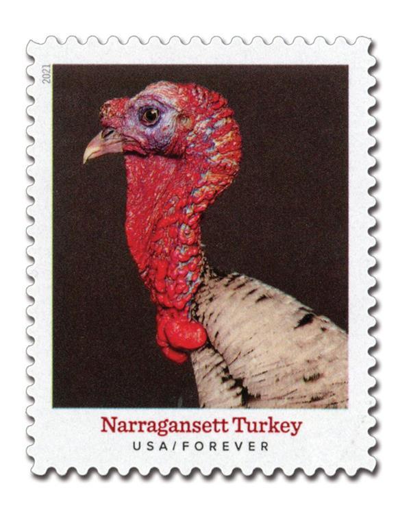 2021 First-Class Forever Stamp - Heritage Breeds: Narragansett Turkey