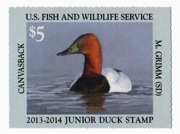 2013 $5 Canvasbacks Junior Duck Stamp