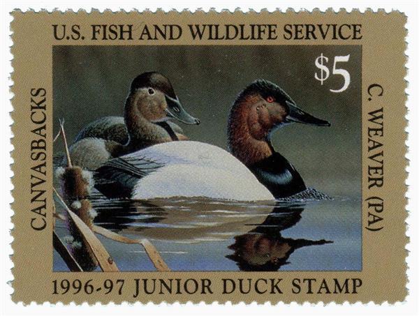 1996 $5 Canvasbacks Junior Duck Stamp