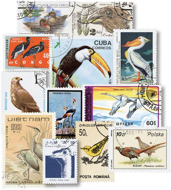 Birds 50 Different Stamps