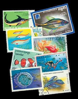 Fish, set of 100 used