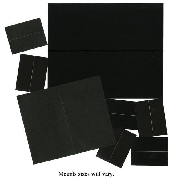 500 Assorted Black Mount Variety Pack