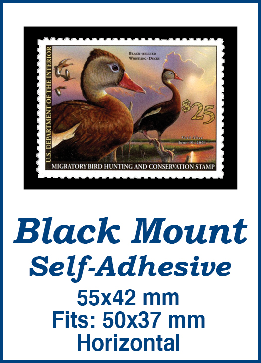 55x42mm 50 Horizontal Black Self-Adhesive Mounts