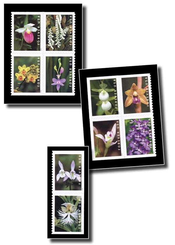 Black Split-Back Mounts for 2020 Wild Orchids (booklet stamps) or 2020 Winter Scenes