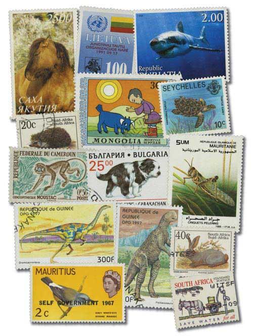 Animals, 500v