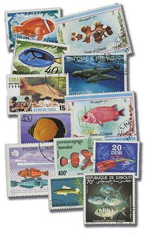 Fish, 200v