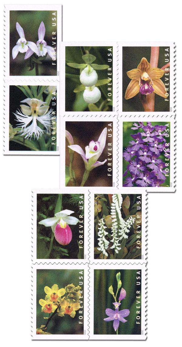 2020 First-Class Forever Stamp - Wild Orchids