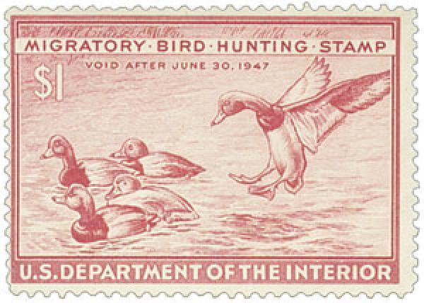 1946 $1.00 Redhead Ducks