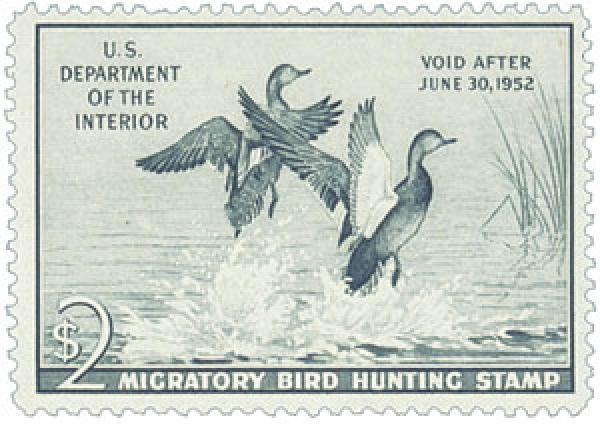 1951 $2.00 Gadwall Ducks