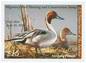 2008 $15 Northern Pintail Duck